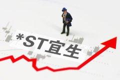 "*ST宜生股价连续20日低于1元,成为首只""1元退市""交易股"