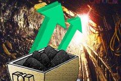 煤炭价格出现大幅上涨,社会各方面反映强烈